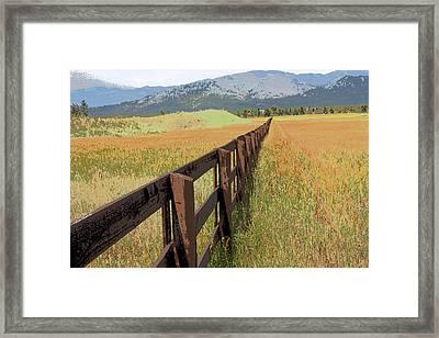 Fencing Framed Print