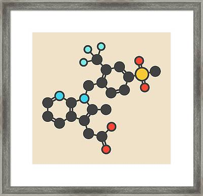 Fevipiprant Asthma Drug Molecule Framed Print by Molekuul/science Photo Library