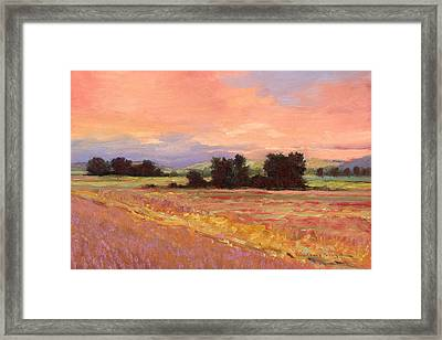 Field Glory Framed Print