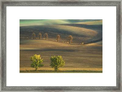Fields... Framed Print