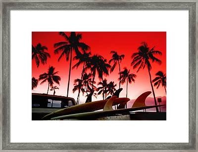 Fins N' Palms Framed Print by Sean Davey