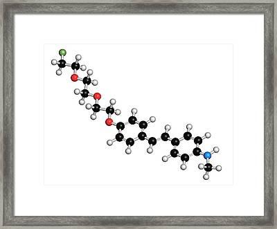 Florbetaben Radiopharmaceutical Molecule Framed Print