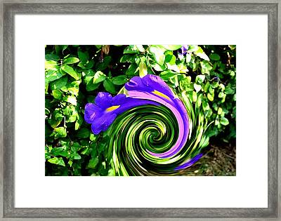 Flower Abstract Study-2 Framed Print by Anand Swaroop Manchiraju