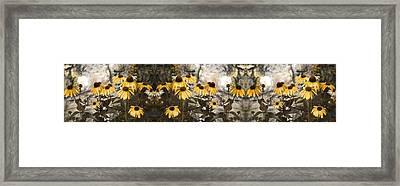 Flowers Framed Print by Betsy C Knapp
