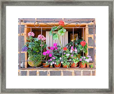 Flowers In A Mexican Window Framed Print