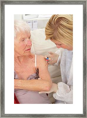 Flu Vaccination Framed Print by Lea Paterson/science Photo Library
