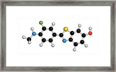 Flutemetamol 18f Pet Tracer Molecule Framed Print by Molekuul
