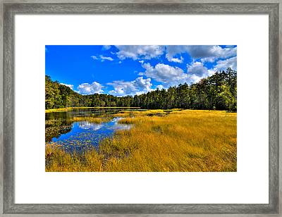 Fly Pond In The Adirondacks Framed Print