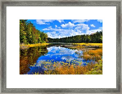 Fly Pond On Rondaxe Road Framed Print by David Patterson