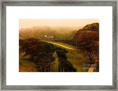 Foggy Autumn Country Road Framed Print