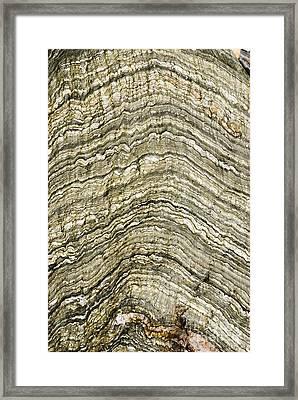 Folded Rock Strata Framed Print by Mark Williamson