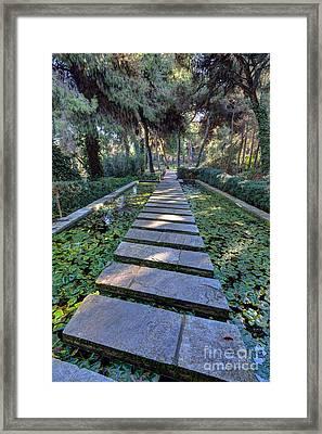 Footpath Framed Print by George Atsametakis