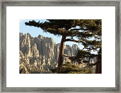 France, Corsica, La Alta Rocca, Col De Framed Print