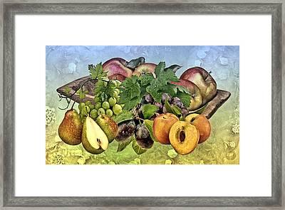Fruits Framed Print
