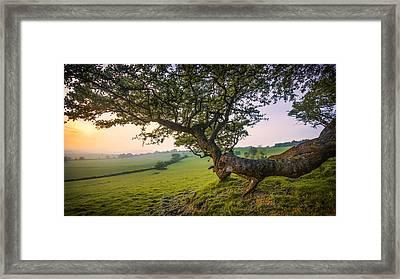 Garden Of England.  Framed Print by Ian Hufton