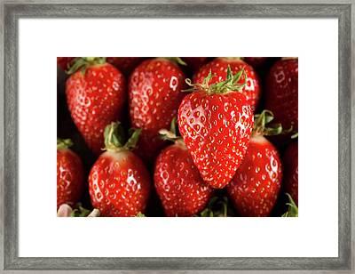 Gariguette Strawberries Framed Print by Aberration Films Ltd