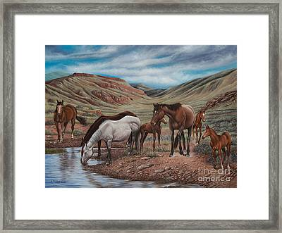 Gathering At Diablo Canyon Framed Print