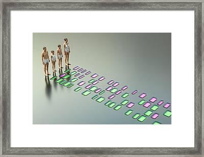 Genetic Relationships Of A Family Framed Print