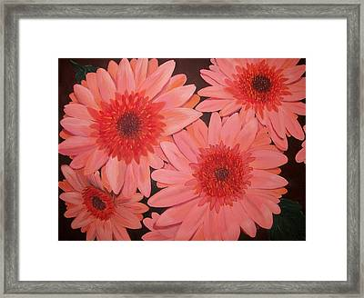 Framed Print featuring the painting Gerber Daisies by Sharon Duguay