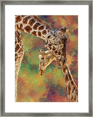 Giraffes - Happened At The Zoo Framed Print by Jack Zulli