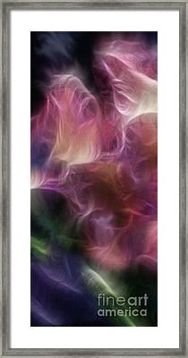 Gladiola Nebula Triptych Panel 1 Framed Print