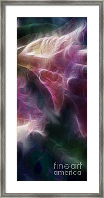 Gladiola Nebula Triptych Panel 3 Framed Print