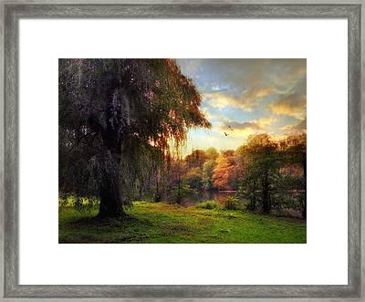 Gloaming Framed Print by Jessica Jenney