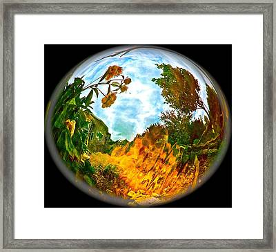 Global Warmth Framed Print by Randy Rosenberger