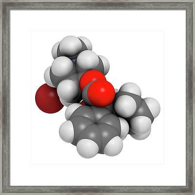Glycopyrronium Bromide Copd Drug Molecule Framed Print by Molekuul
