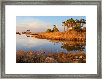 Gordons Pond Framed Print