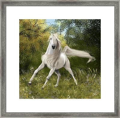 Graceful Framed Print by Kate Black