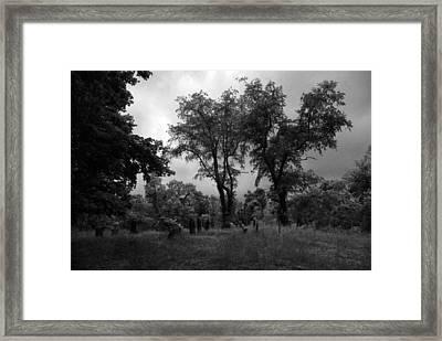 Graveyard 1 Framed Print