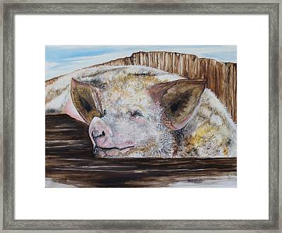 Happiness Is A Mud Puddle Framed Print