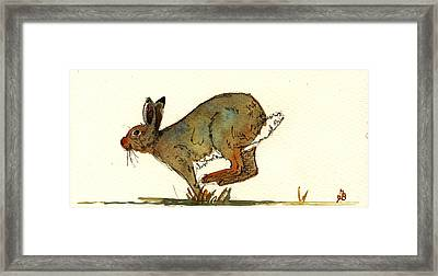 Hare Framed Print by Juan  Bosco
