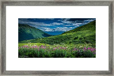 Hatcher's Pass Framed Print