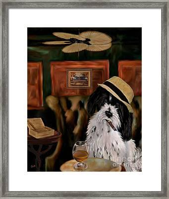 Havanese Framed Print