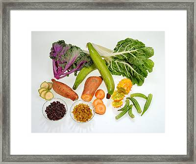 Healthy Fruits And Vegetables Framed Print by Science Source