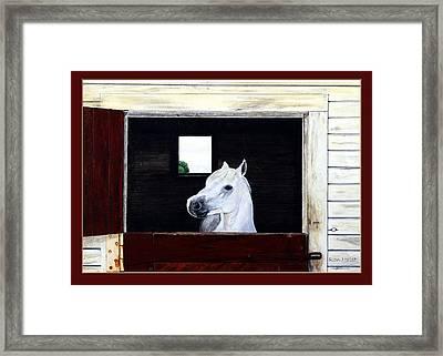 Hero Framed Print by Ron Haist