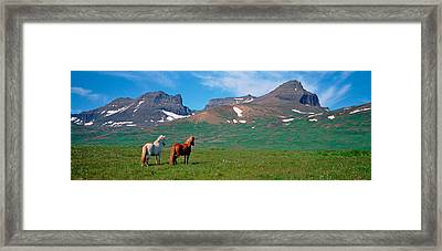 Horses Standing And Grazing In A Framed Print by Panoramic Images