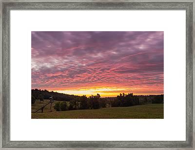 Hunting Dawn Framed Print