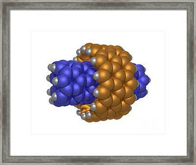 Hydrocarbon-based Nanotechnology Framed Print by Scott Camazine