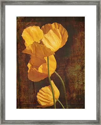 Icelandic Poppy Framed Print by Bellesouth Studio