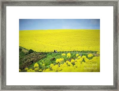 Rapeseed Field... Love Story Framed Print by Katy Mei
