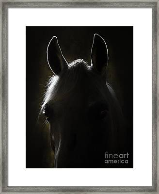 In The Darkness Framed Print by Angel  Tarantella