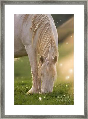 In The Land Of  Unicorns Framed Print by Angel  Tarantella