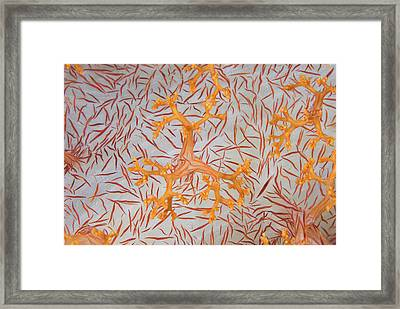 Indian Ocean, Indonesia, Papua, Raja Framed Print by Jaynes Gallery