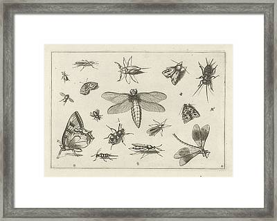 Insects, Jacob Hoefnagel, Joris Hoefnagel Framed Print