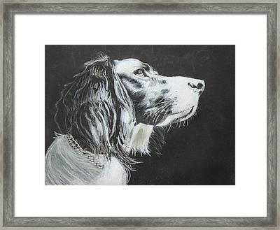 Intent Framed Print by Jeanne Fischer