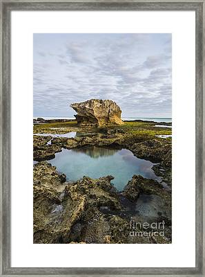 Intertidal Zone, South Africa Framed Print by Peter Chadwick