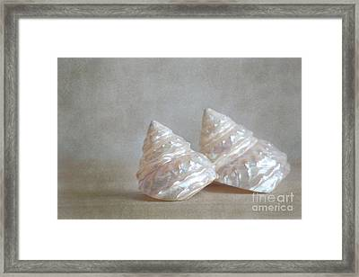 Framed Print featuring the photograph Iridescent Shells by Aiolos Greek Collections